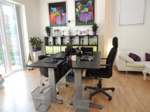 Stue-kontor (5)